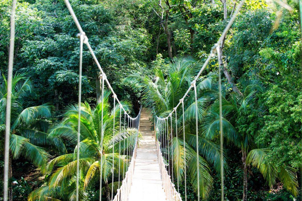 Where will your Roatan Honduras eco-adventure take you? Best things to do in Roatan Honduras